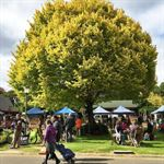 Adelaide Hills Farmers Markets