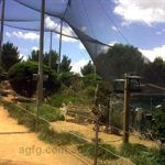 Canberra Walk In Aviary