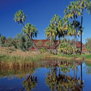 Northern Territory Travel 2