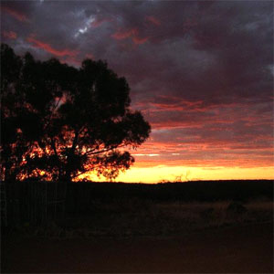 Wheatbelt Travel 3
