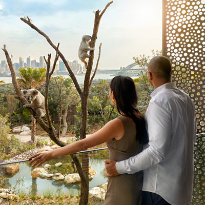 WIN a Night's Stay at The Wildlife Retreat Taronga!