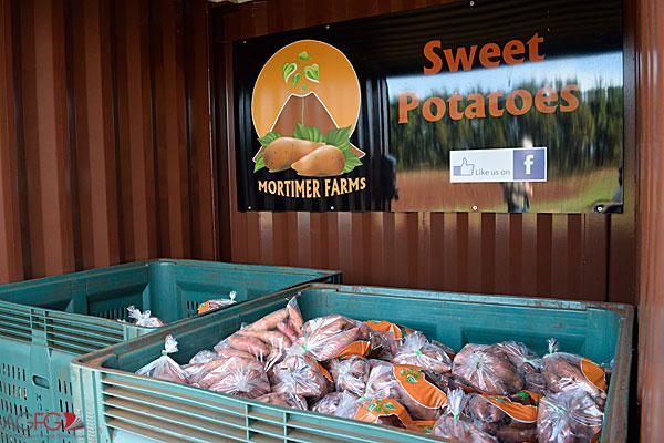 AGFG Road Trip: 3 Days at Bundaberg's Winterfeast