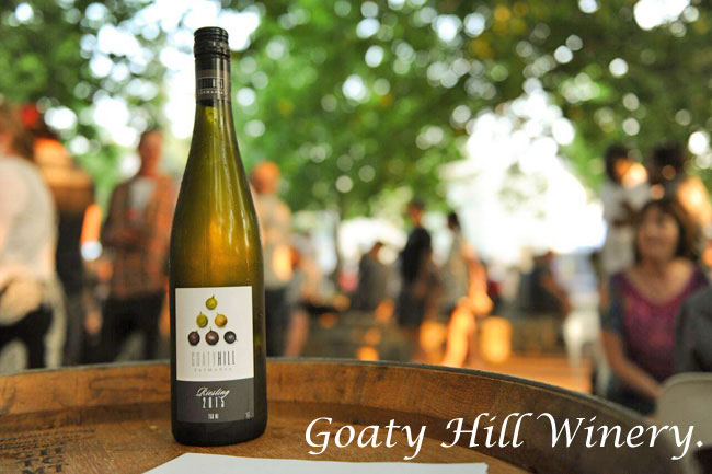 Winter Winery Wonders