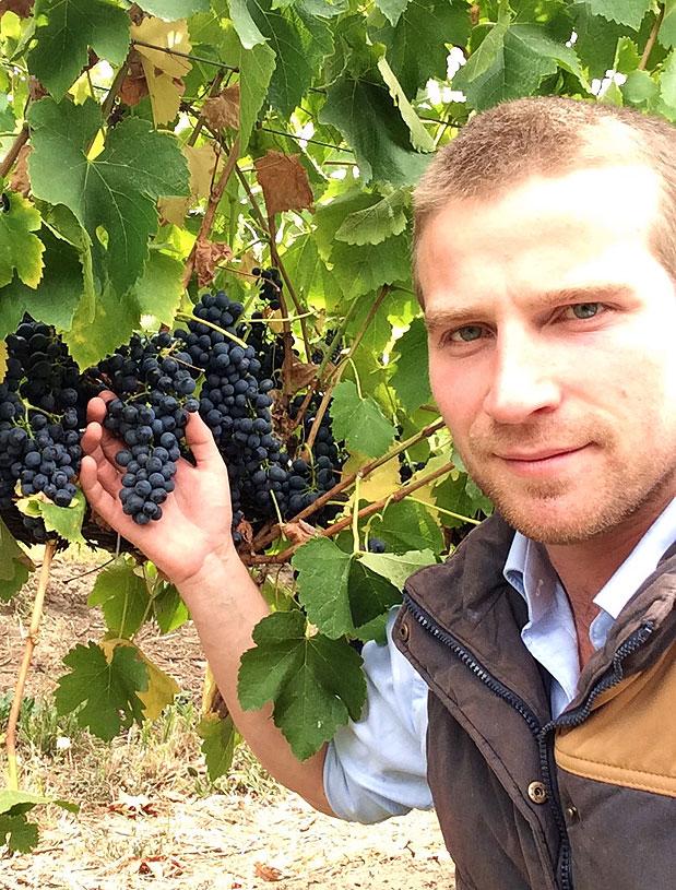 Not Just a Winemaker, Interview: Tom Northcott