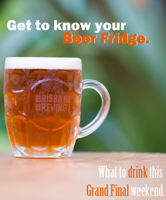Get to Know Your Beer Fridge