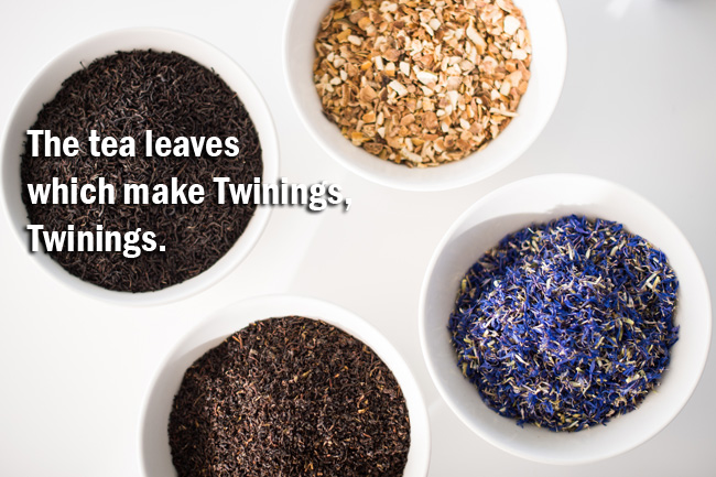 Free Twinings Public Tea House Pop-Up