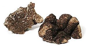 Australian Truffles