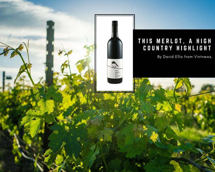 This Merlot, A High Country Highlight