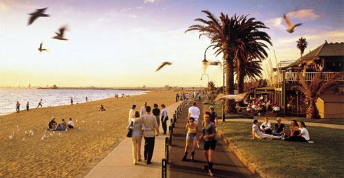 Beaches & Surfing in Victoria