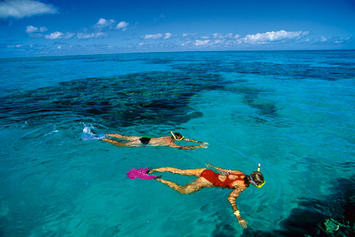 Diving & Snorkelling in Queensland