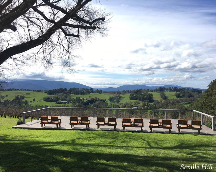 Visit Wine Country Now During Harvest Season