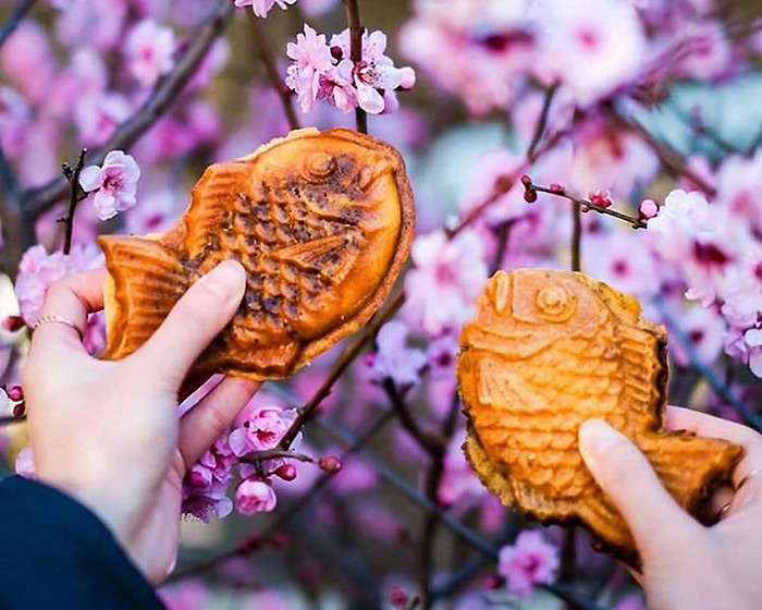 Spring into Cherry Blossom Season at 18 of our Favourite Japanese Restaurants
