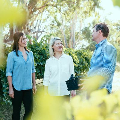 Heard it Through the Grapevine: Siblings Organic Wine Success