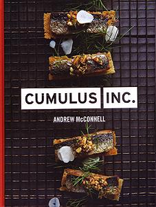 Book Review - Cumulus Inc.