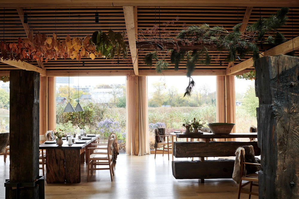 From the World's Greatest Restaurant to Pipit - Ben Devlin Shares NOMA Secrets.