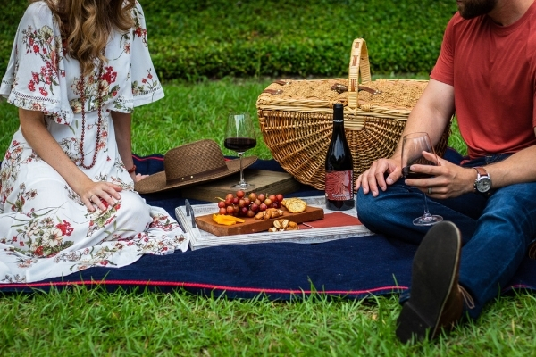 Going on a Picnic? Alpaca Lunch - Five Picnic Plates Best Enjoyed with Bubbles.