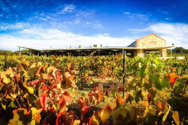 There's Never Been a Better Time to Try Australian Wine – 2021 Wine Harvest.
