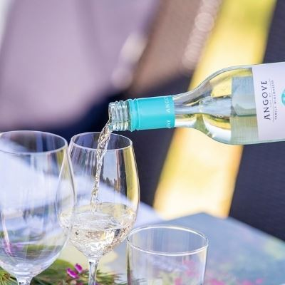 Great Minds Drink Alike – Cheers to National Pinot Grigio Day.