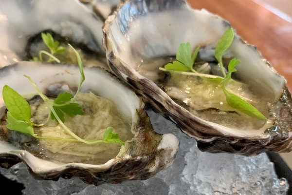 Awww Shucks! It's National Oyster Day 2021 – Try this Recipe by Matt Golinski to Celebrate.