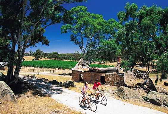 Cycling in South Australia
