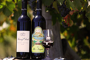 5 stars For Passing Clouds Winery