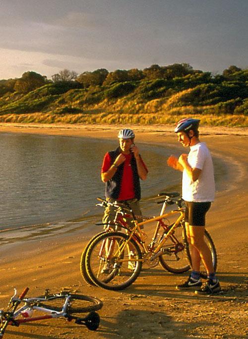 Cycling & Mountain Biking in Tasmania