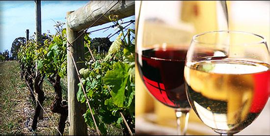 Wineries in Western Australia