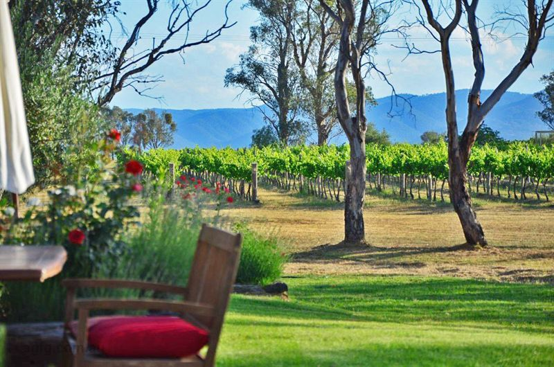 Touring NSW Wine Regions