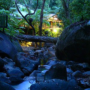 A Daintree Secret