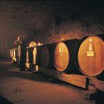 Seven Hills Cellar