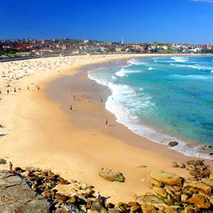 Sydney City Beaches