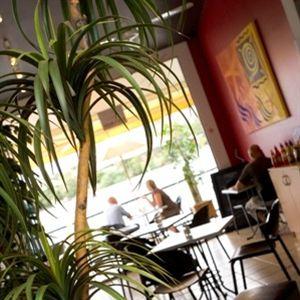 Cafe Vincino