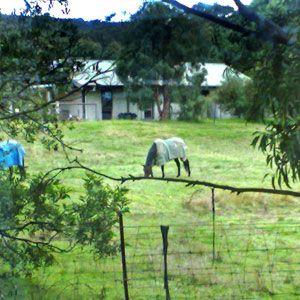 The Glen Farm Cottages