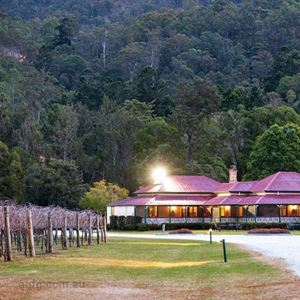 O'Reilly's Canungra Valley Vineyards