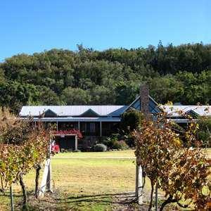 Cody's Vineyard Accommodation