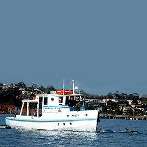 Bay Fish N Trips