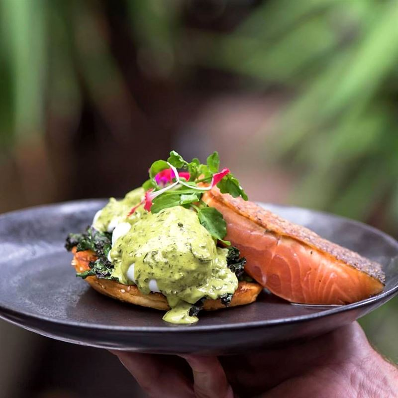 Armchair Collective, Mona Vale - Menus, Phone, Reviews | AGFG