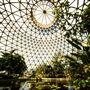 Brisbane Botanic Gardens Mount Coot-tha