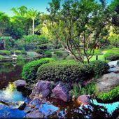 Brisbane Botanic Gardens Logo