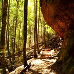 Bushwalking in Capital Country and Southern Higlands