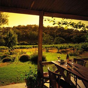 Wine Tours in Clare Valley
