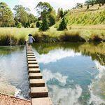 Tasmanian Arboretum