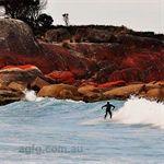 Surfing on East Coast Tasmania
