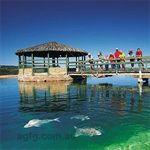 Ocean Park Aquarium
