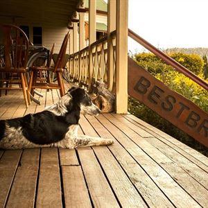 Bestbrook Mountain Resort