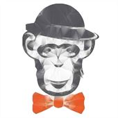 The Monkey Bar Logo