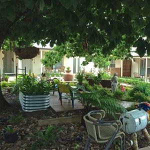 Oaktree Cottages