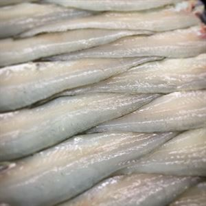 San Remo Fishermans Co-op