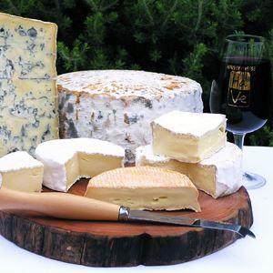 Harvey Cheese