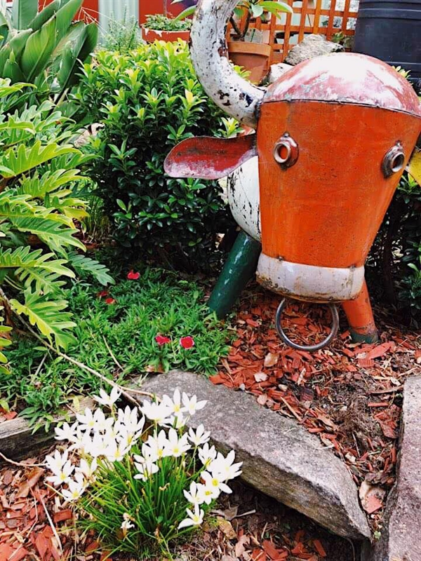 Botanica Garden Cafe Waverton Menus Phone Reviews Agfg